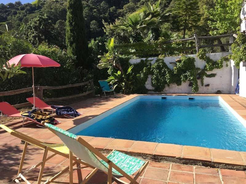 别墅游泳池设计五要素 别墅游泳池的类型